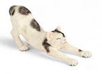 Игровая фигурка «Кошка потягивается» Schleich, арт. 13677